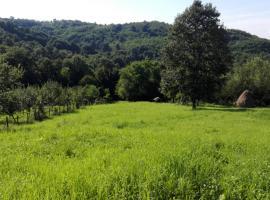 Beslagic Brdo Doboj, Doboj (Vranduk yakınında)