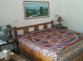 Hill View Room In Ranikhet