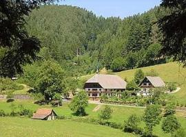 Waldbauernhof, Hornberg (Am Bach yakınında)