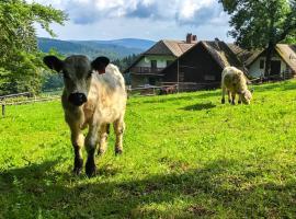 Chalupa u Pichlerů, Stachy (Zadov yakınında)