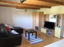Studio Apartment Safran 2, Bužinija