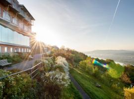 Hotel Schachner Krone und Kaiserhof, Мариа-Таферль