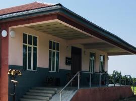 Wine Yard Tela, Лагодехи (рядом с городом Tkhilistskaro)