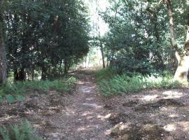 Au bout du chemin, Milly-la-Forêt (рядом с городом Noisy-sur-École)