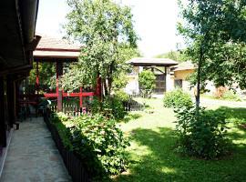 Rosna Villa with river, Rosno (Slivovitsa yakınında)