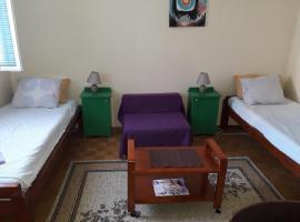 Apartman Marjanovic, Donji Milanovac (Near Djerdap National Park )