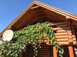 Гостевой домик, Kozin