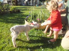 Idyllic Farm Cottage & Petting Zoo