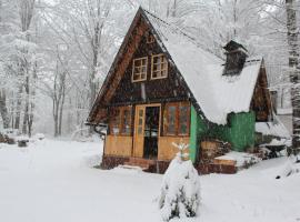 Villa Bodulica ( Secluded Mountain Retreat )