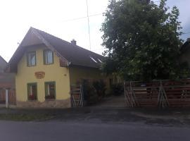 Borostyán Vendégház, Petőmihályfa (рядом с городом Csehimindszent)