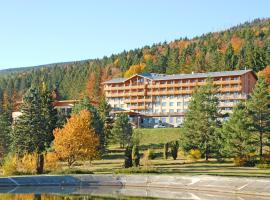 Hotel Partizán, Tale