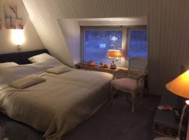Gezellige zolder in Wassenaar met dakterras