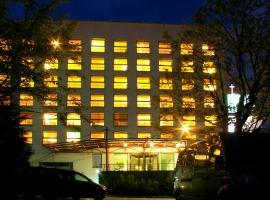 Centre Hotel, Каунас