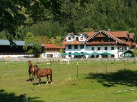 Gutshof zum Schluxen, Pinswang (Musau yakınında)