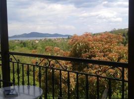 Μονοκατοικία με θέα στη λίμνη Πλαστήρα