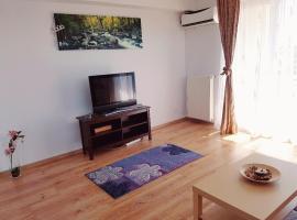 Otopeni Residence Apartment