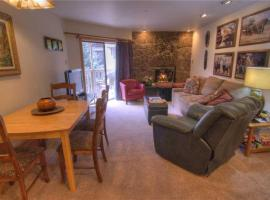 Deluxe Condo looks over Lionshead Village and Vail Gondola | Westwind 308 + Westwind 308 2BD Condo with A-C