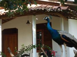 Peacock Garden Cabanas