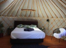 Yurt in orange grove
