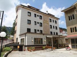 Hotel Da Remo