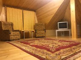Vacation Home in Vnukovo