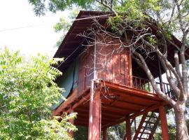 Dambulla Tree House