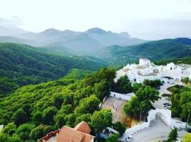 El Mountazah