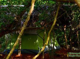 Sigiri Jungle Camping