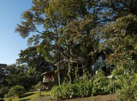 Cabañas Bosques de Paz