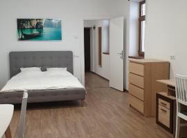 Carpati Living Apartment 1