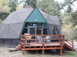 Little Dome Pay it Forward / Near Bunnylane