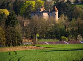 Château de Tanay B&B, Сен-Дидье-де-Форман (рядом с городом Misérieux)