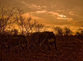 Kruger Park Bungalow