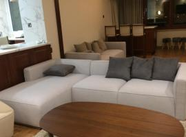 luxury 2 bed room apartment fully furnished