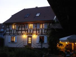 Chat au Grumbach, Mooslargue (Bonfol yakınında)