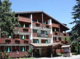 Hotel Igloo