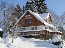 Pension & Restaurant Krakonoš, Harrachov