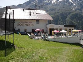 索奈克阿爾卑斯山旅館