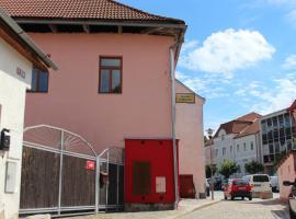 Penzion U Růžičků, Třešť (Dlouhá Brtnice yakınında)