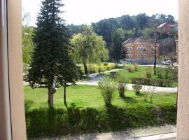 Apartments Bokan, Цетине