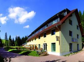 Waldhotel am Aschergraben, Geising