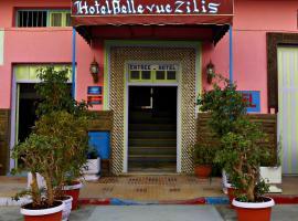 Hotel Belle Vue Zillis
