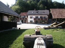 Pri Lazarju Farm Stay, Podgrad
