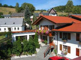 Landhotel Gasthof Zwota, Klingenthal