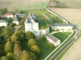 Gîtes du Château de La Motte, Usseau (рядом с городом Ingrandes)