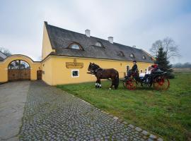 Dvůr Olšiny -Hotel and Horse-riding, Karviná