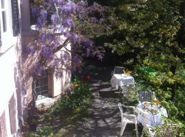 Garden Studio Apartment Zürichberg