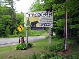 Bear Tree Lodge