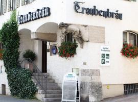 Hotel Gasthof Traubenbräu, Krumbach (Neuburg an der Kammel yakınında)