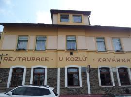 Pension Kozel, Ricany